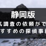 静岡県の探偵事務所