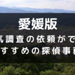 愛媛県の探偵事務所
